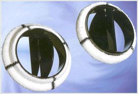 prothese-a-ailettes